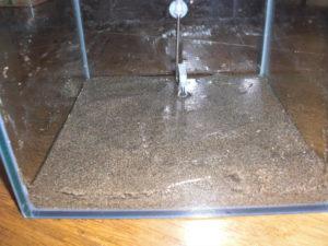 使用済みの底砂投入