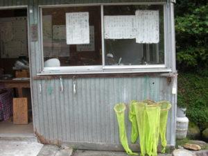 釣り堀事務所